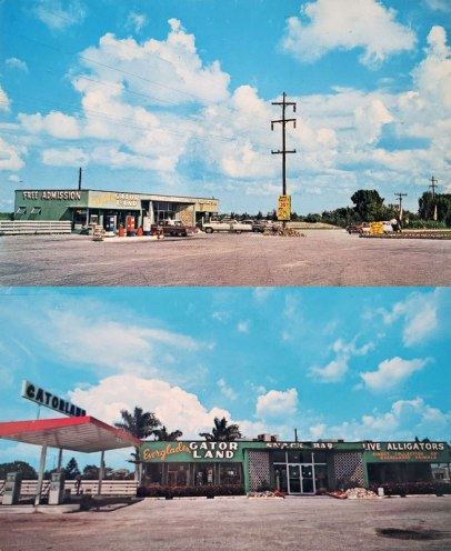 Everglades Gatorland detail, vintage postcards